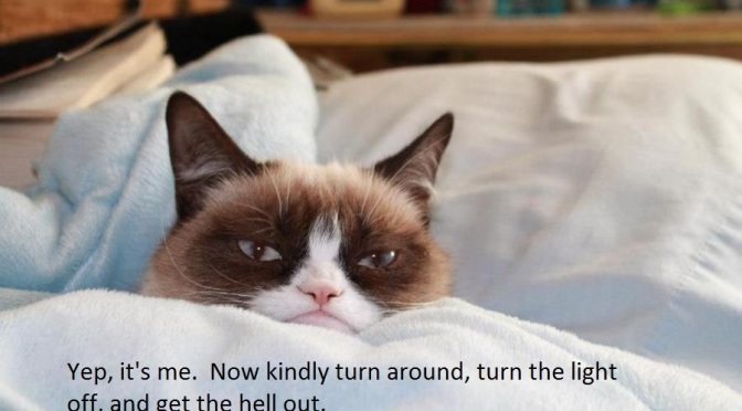 "Tardar Sauce – ""the Grumpy Cat"" my contribution…"