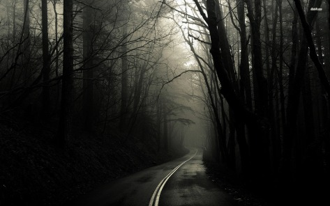 dark-road-through-woods