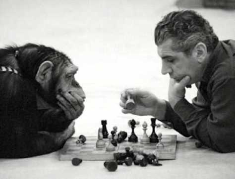 chimp-chess